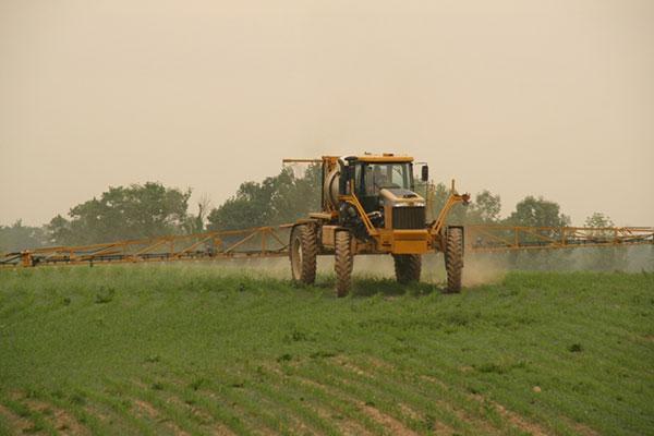 Rogator Spraying Corn